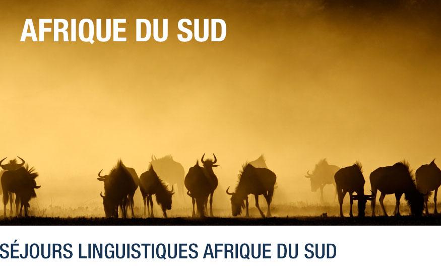afrique-sud